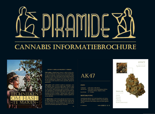 Download de cannabis informatiebrochure